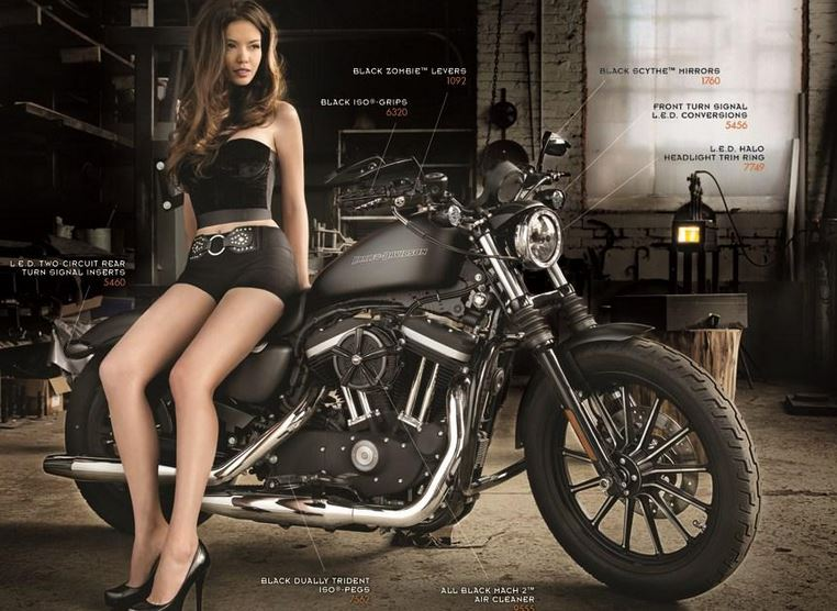 customize your harley with harley davidson sportster parts